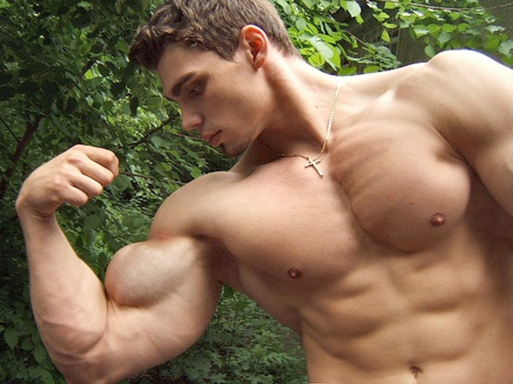 gay muscle men sex