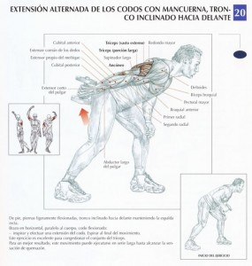 patada de tríceps con mancuerna