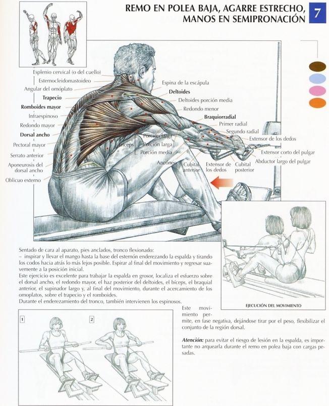 Los ejercicios para el aumento de los pechos sin operación
