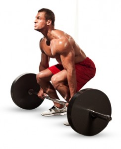 consejos aumentar masa muscular