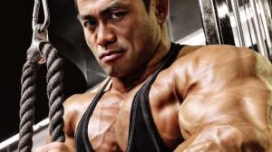 principios para aumentar la masa muscular