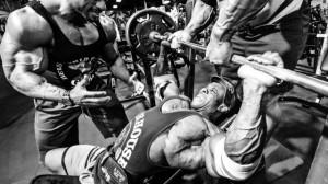 entrenamiento masa muscular